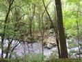 吐竜の滝(1)